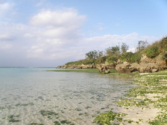 Yonamine Nagahama Beach: 磯もある