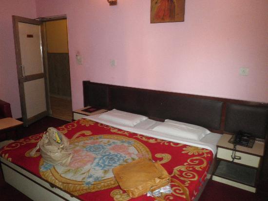 OYO 2902 Hotel Lal's Haveli: room