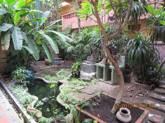 Casa Brazil Homestay & Gallery: Small oasis