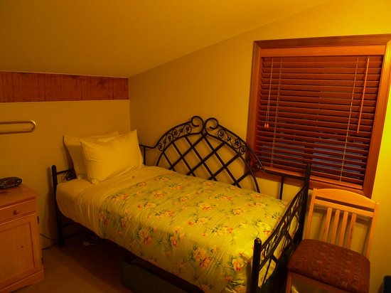 Cedar Springs Bed and Breakfast Lodge : Single bedroom