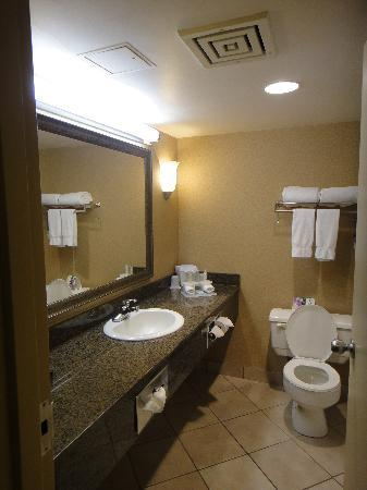 Holiday Inn Express Hotel Vancouver Metrotown: Spacious bathroom