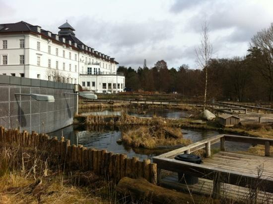 Silkeborg, Danmark: ferskvandscentret