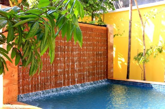 Golden Mango Inn: Swimming Pool