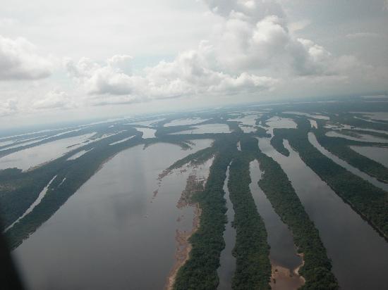 Arquipelago de Anavilhanas: Imagen aerea del archipielago