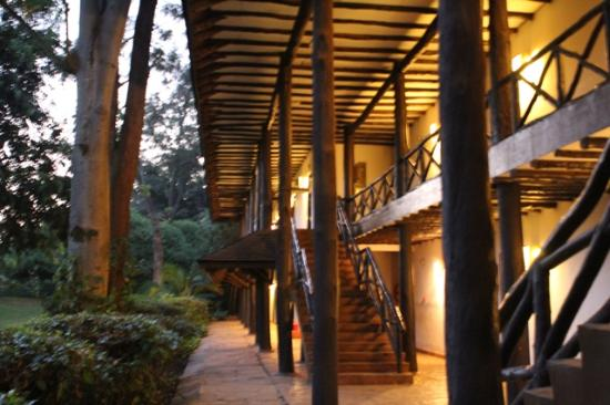 Safari Park Hotel: Ourside the rooms