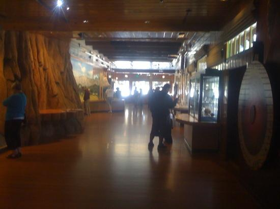 Kings Canyon Visitor Center: a view of the inside of the museum.