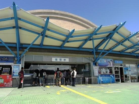 ?? - Picture of National Museum of Marine Biology and Aquarium ...