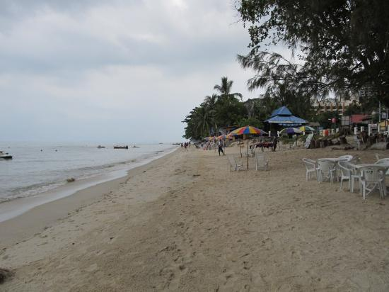 Shalini's Guest House: beach