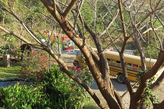 Hacienda Guachipelin : always some acivity below the restaurant
