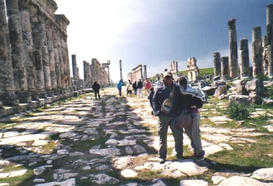Apamea: Via colonnata