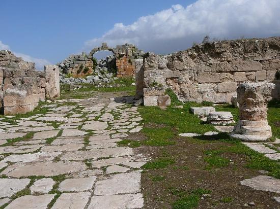 Apamea: Porta di Antiochia