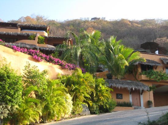 Hotel Cinco Sentidos: paradise