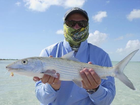 Andros Island Bonefishing Club張圖片