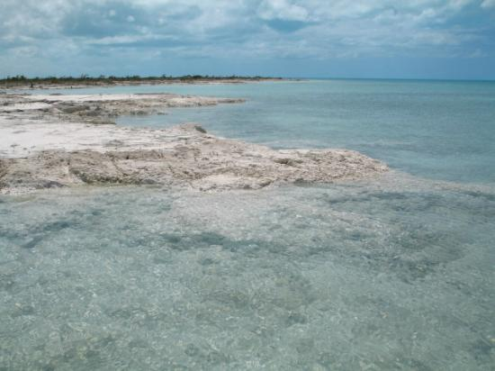 Andros Island Bonefishing Club 이미지