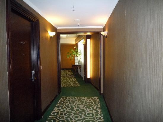 Taipei International Hotel: 廊下