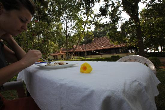 The Pamba Heritage Villa: View from the Dining Garden