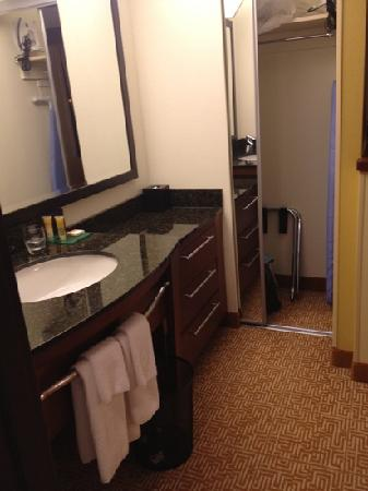 Hyatt Place Minneapolis Airport - South: only closet in room