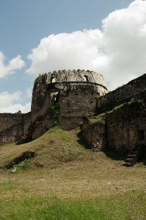 ‪The Old Fort (Ngome Kongwe)‬