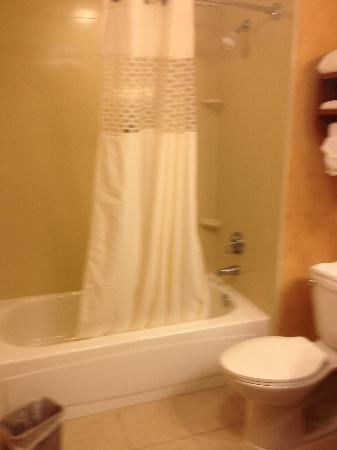 Hampton Inn Los Angeles/Santa Clarita: Bathroom 2