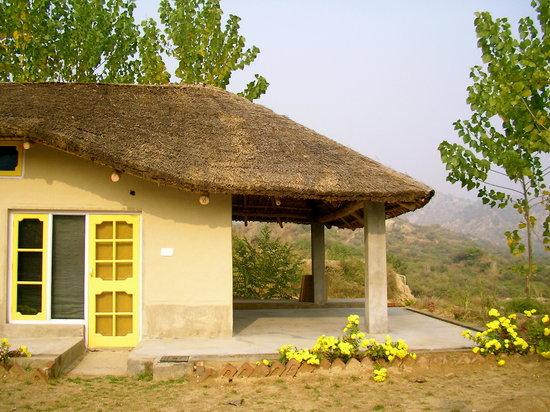 Prakriti Farm