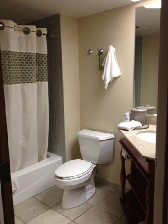 Hyatt Place Minneapolis Airport - South: bathroom