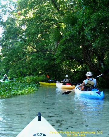Central Florida Nature Adventures: Time for some fun!
