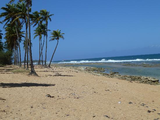 Coqui del Mar Guest House : Pinones, a short drive to the East