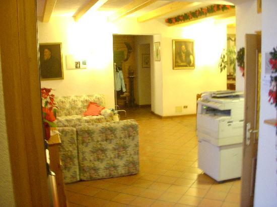 Hotel Al Pelmo: hall