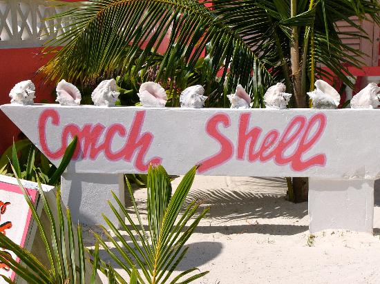 Conch Shell Inn : Pink!