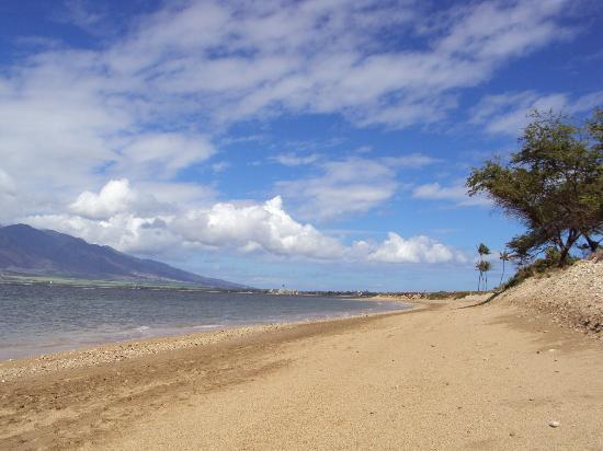 Kauhale Makai, Village by the Sea: Our beach