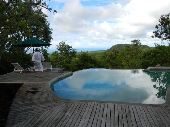 Galapagos Safari Camp: Pool