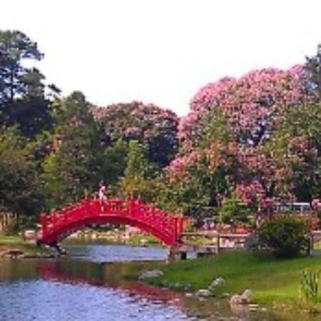Park Tower: Japanese garden
