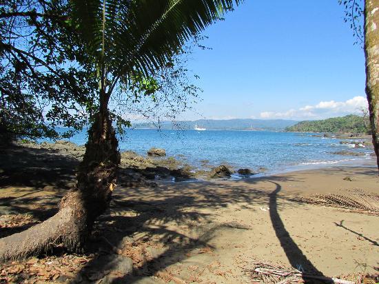 Las Caletas Lodge: Beach out front