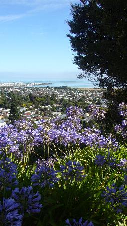 Te Maunga: View from backyard