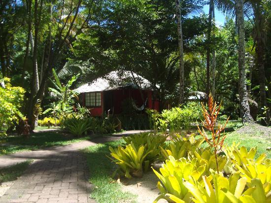 Anima Hotel: O jardim à frente do bangalô nº 1.