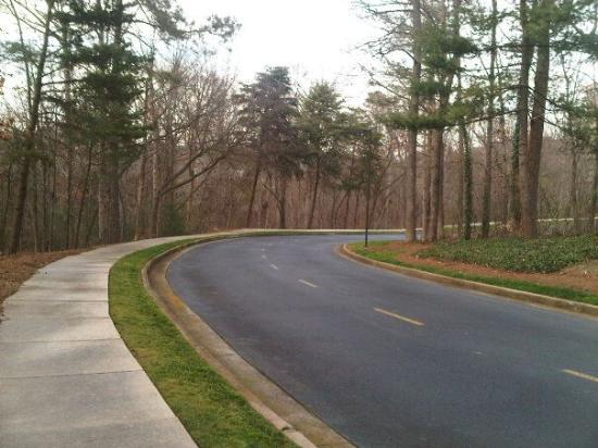 Atlanta Marriott Northwest at Galleria: Behind the hotel..nice area to walk or jog