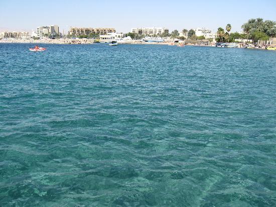 Mar Rojo Fotografia De Jordania Oriente Medio Tripadvisor