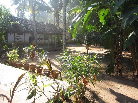 Ayur Theeram Ayurvedic Resort: Garden in front of the apartment