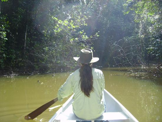 Laguna del Lagarto Lodge: Canoeing through the forested lagoon