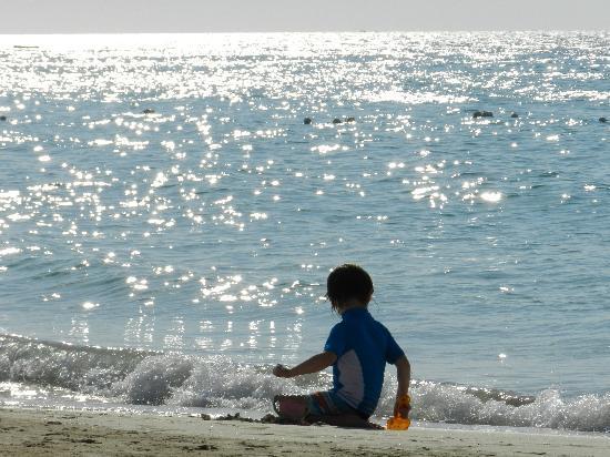 "Seven Mile Beach: ""happy place"""