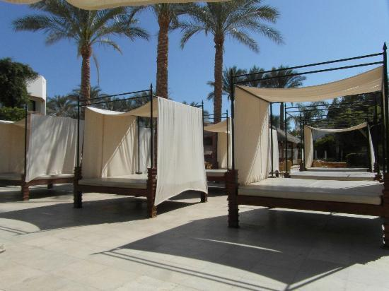 Ghazala Gardens Hotel: Poolside beds - lovely & Poolside beds - lovely - Picture of Ghazala Gardens Hotel Sharm El ...