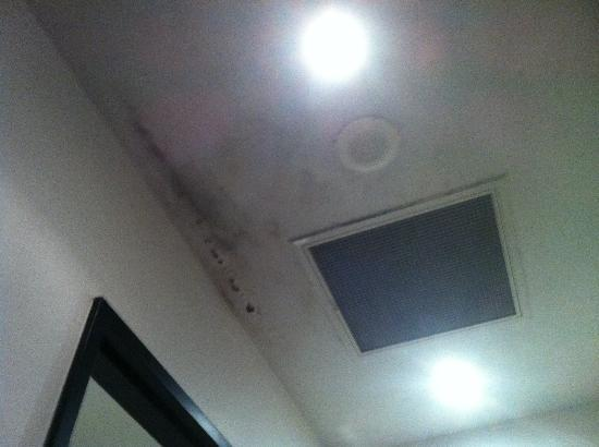 Chifley Plaza Townsville: A beautiful shot of the mould ceiling.