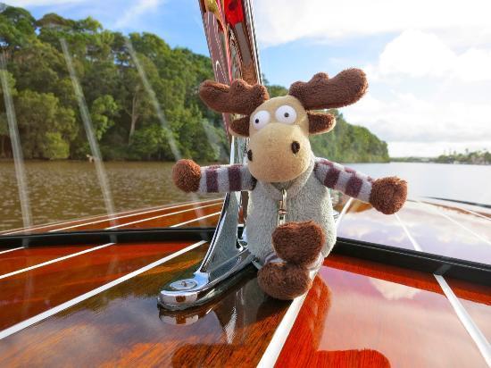 The Sebel Noosa: Take a Noosa Dream Boat Ride