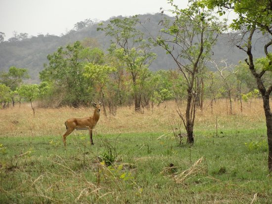 Greater Accra, Ghana: shai hill reserve