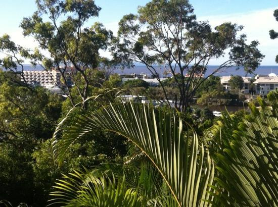 Noosa Crest: View from balcony