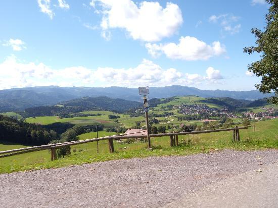 Gasthaus Rebstock: Prachtig uitzicht tijdens een wandeling