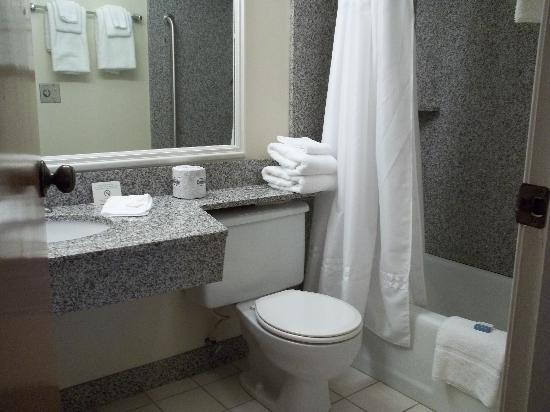 BEST WESTERN Falcon Plaza: Beautiful bathroom with black marble