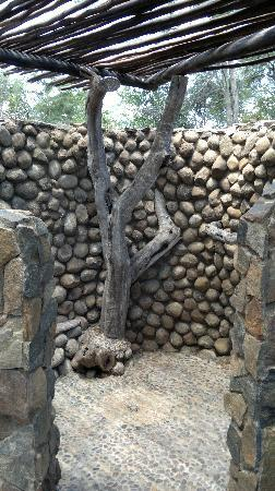 Pamuzinda Lodge: Outdoor area of lodge