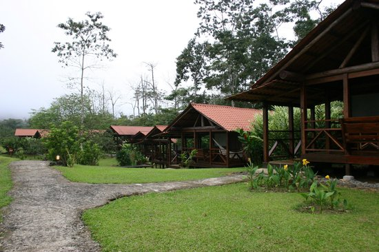 La Anita Rainforest Ranch: Nice cosy cabins