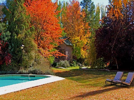 Parque-piscina (39837122)